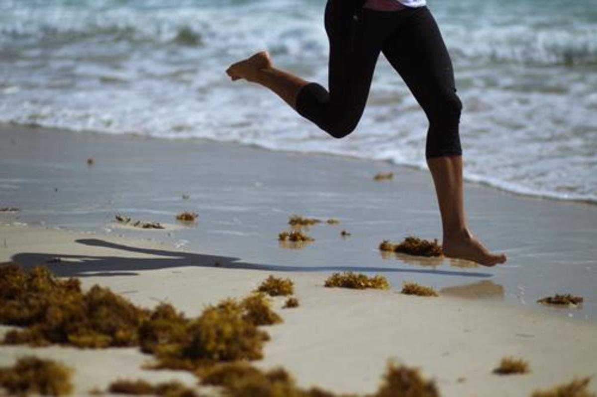 Chariots Of Palm Beach >> THE MUSE : Creative Training: Running at the Beach