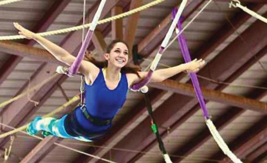 Stoloff Swings a Spot in the Circus
