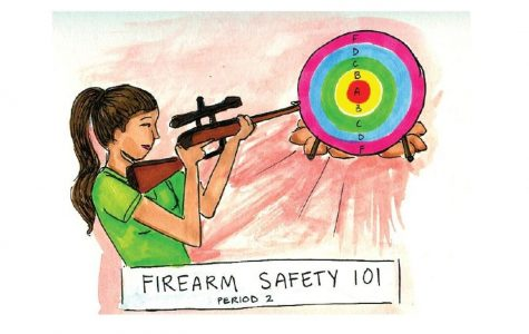 Gunning for Safety in Schools