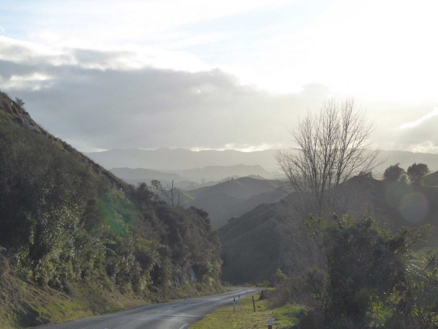 While crossing the North Island, communications junior Tom Kapitulnik and her family traveled along the forgotten world highway.