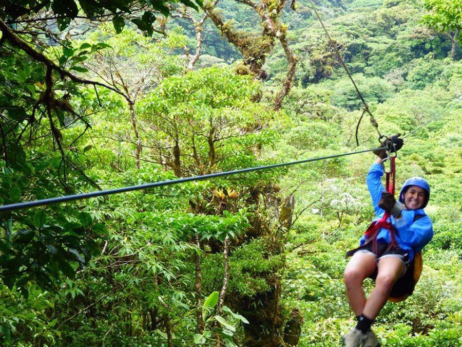 Communications junior Tom Kapitulnik zip lining in Monteverde, Costa Rica.