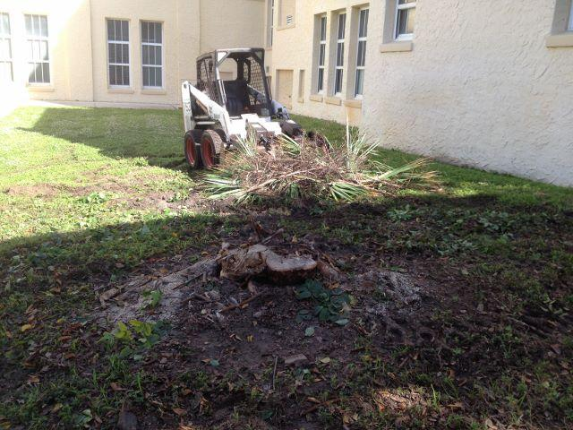The tree trimming crew has been working on clearing out the remains of the tree near Building 1.