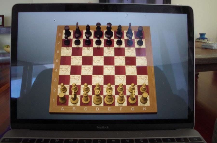 Chess is a sport that requires little pysical ability and can be fun for all ages. Chess's strategice value and simple nature makes it an easy alternative to some of those hotter, outside sports.