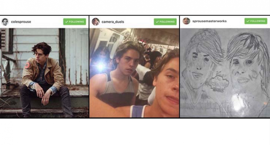 Images from Cole Sprouse's three Instagram accounts. Each account provides a different form of self expression from Sprouse and entertainment to his fans.