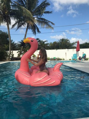 Dance junior Emily Sweetz modeling a retro-striped one piece on her pink flamingo pool float at her home.