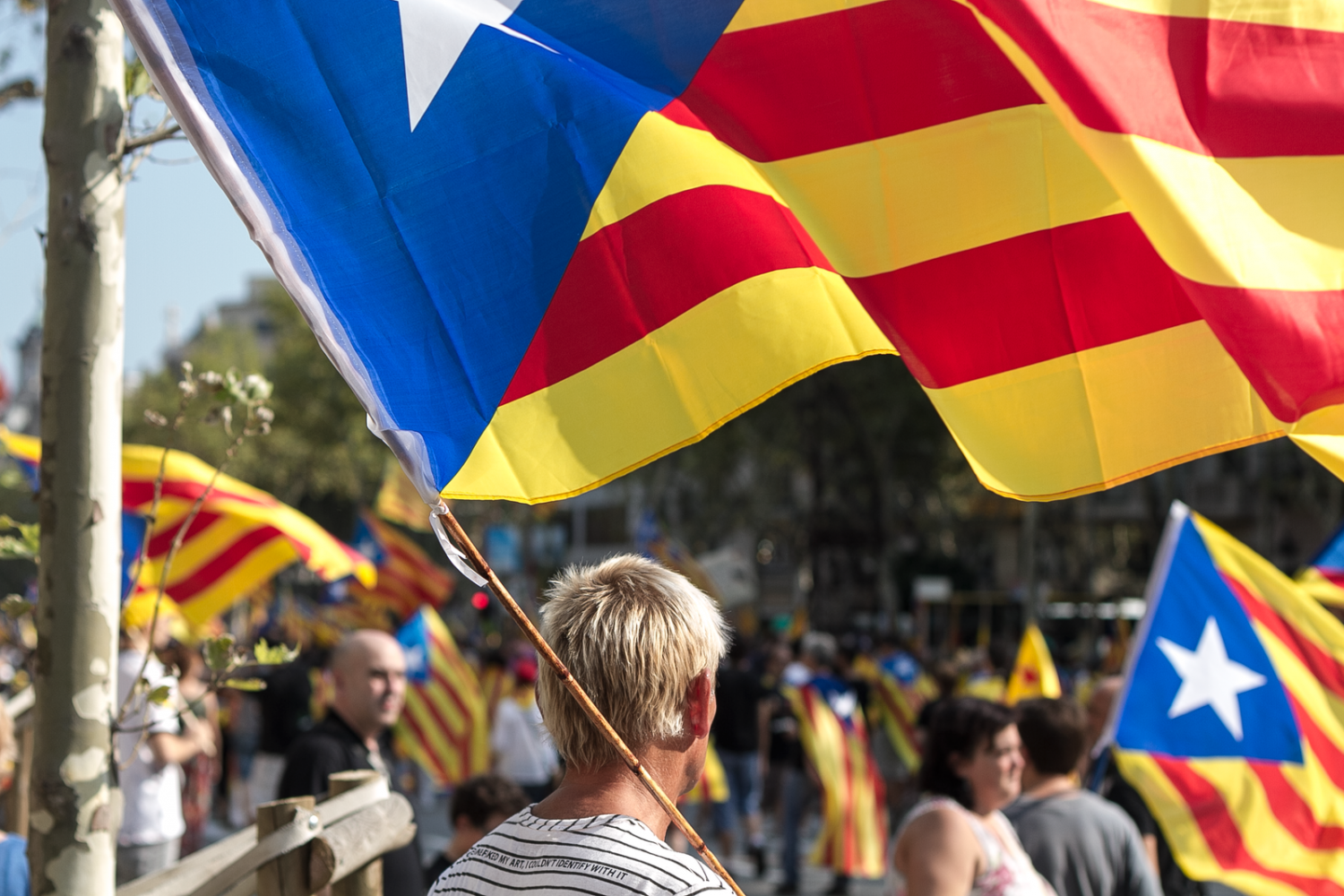 Catalans of all ages march through streets of Catalonia, showing the widespread support for the referendum on independence.