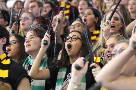 Class of 2018 seniors sporting their Harry Potter themed wands and scarves cheer during the annual Dreyfoos pep rally that took place on Friday, Feb. 2.