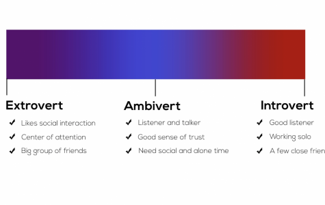 ARE YOU AN EXTROVERT, INTROVERT, OR AMBIVERT?