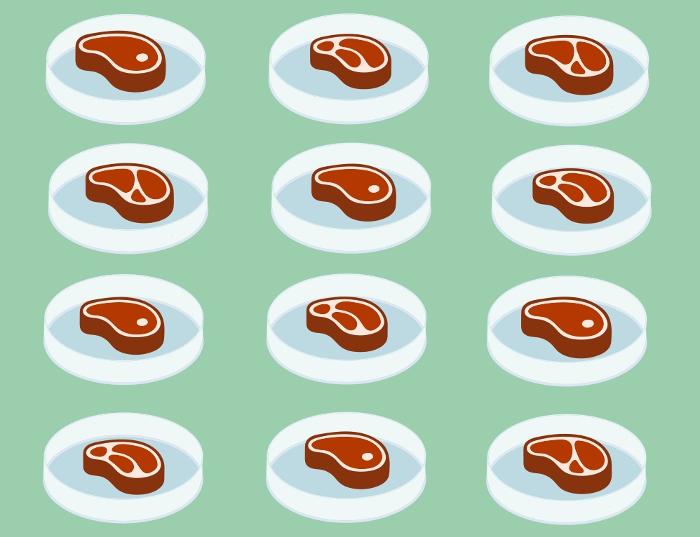LAB GROWN MEAT: REVOLTING OR REVOLUTIONARY?