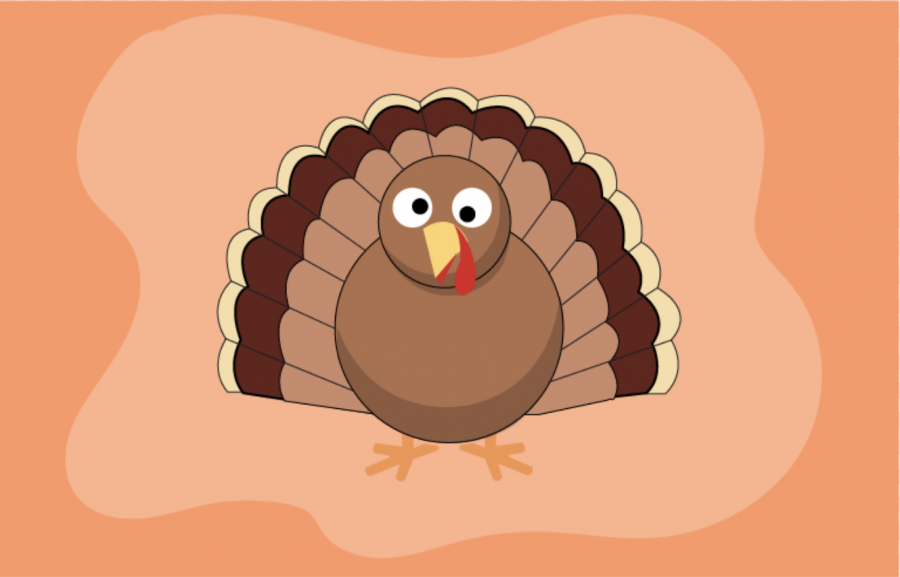 WHAT+ARE+YOUR+PLANS+FOR+THANKSGIVING+BREAK%3F