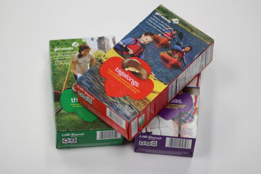 girl scouts-2